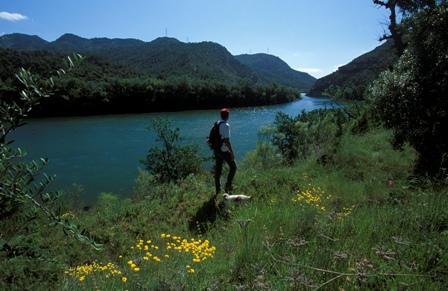 Entrada del pas de l'Ase, la Ribera d'Ebre, Terres de l'Ebre, Tarragona