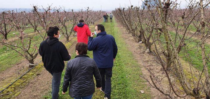 Moment de la visita amb les productors de la Ribera d'Ebre
